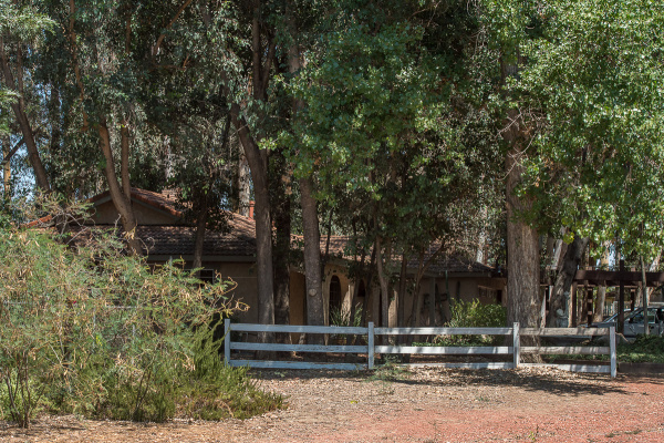 PEACEFUL AND GREEN - The former Burbank mountain lions have a verdant address at Animazonia.