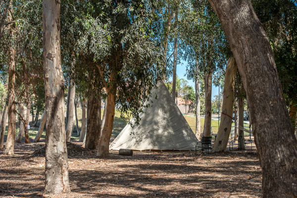 YUP, A TIPI -- Animazonia plans on having overnight experiences for groups in the future.