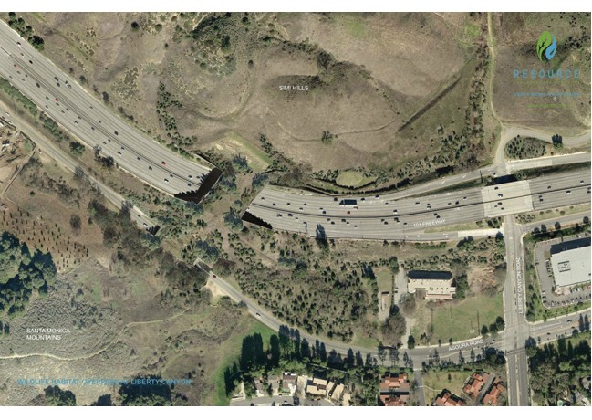 A POSSIBLE LOOK ABOVE: The overcrossing will connect landscap. RENDERING by Clark Stevens, Resource Conservation District f the Santa Monica Mountains