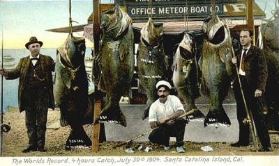 SeaBass_postcards