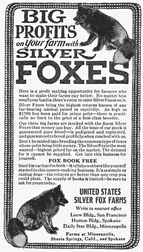 foxfarmad1924